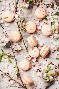 Flat lay of sweet macaron cookies and blossom flowers and branches