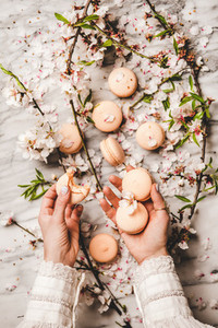Womans hands holding macaron cookies over floral background