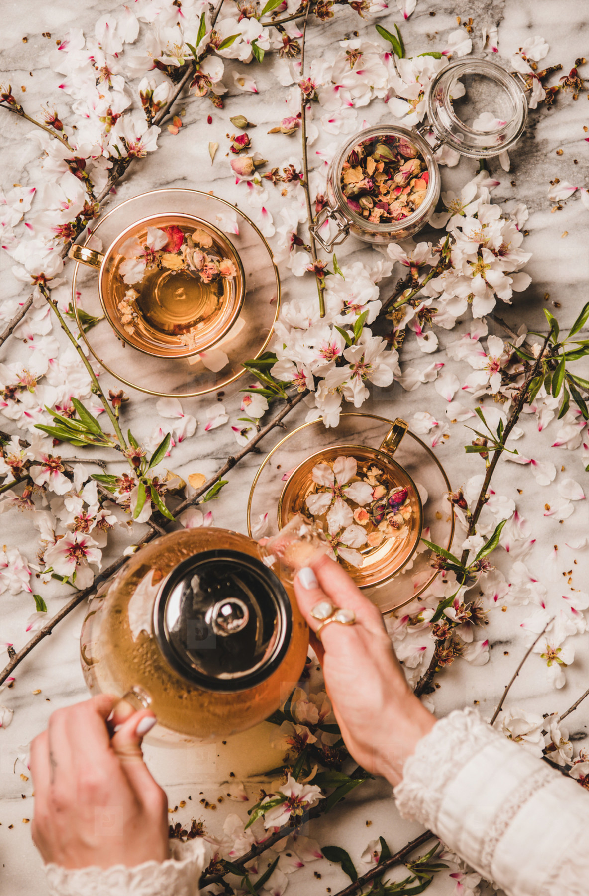 Female hands holding teapot with black tea over blossom flowers