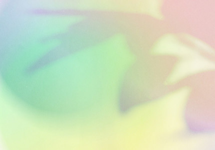 Natural shadow overlay on abstract gradient colorful background