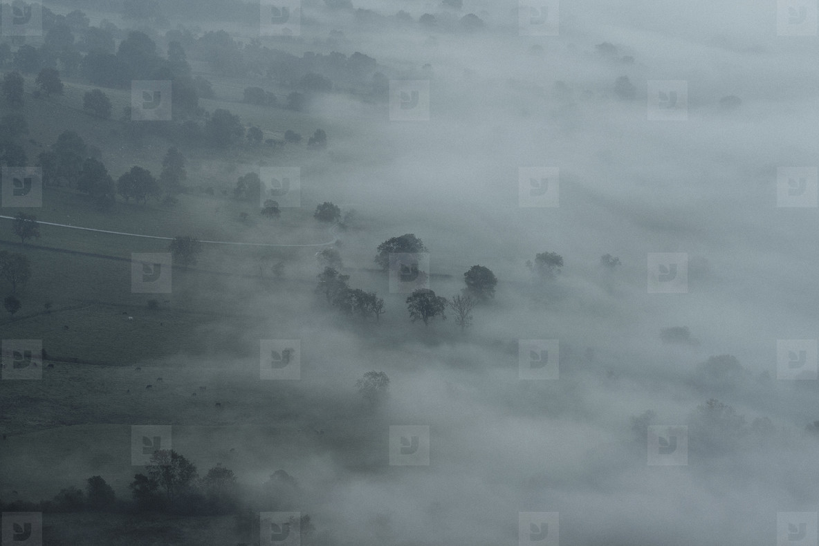 Ethereal fog over trees and landscape  England