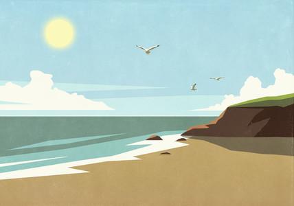 Seagulls flying over sunny tranquil ocean beach