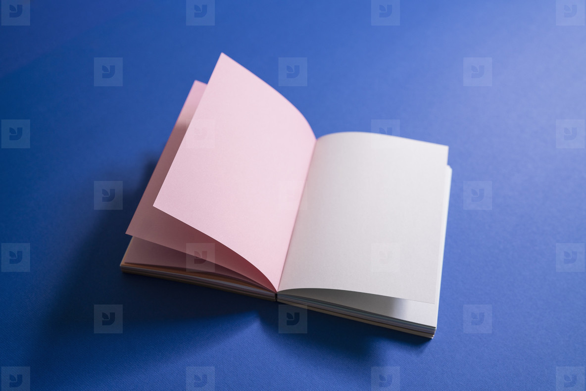 Blank pages in open journal