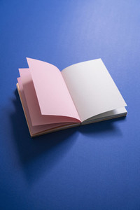 Blank pages in open notebook on blue background