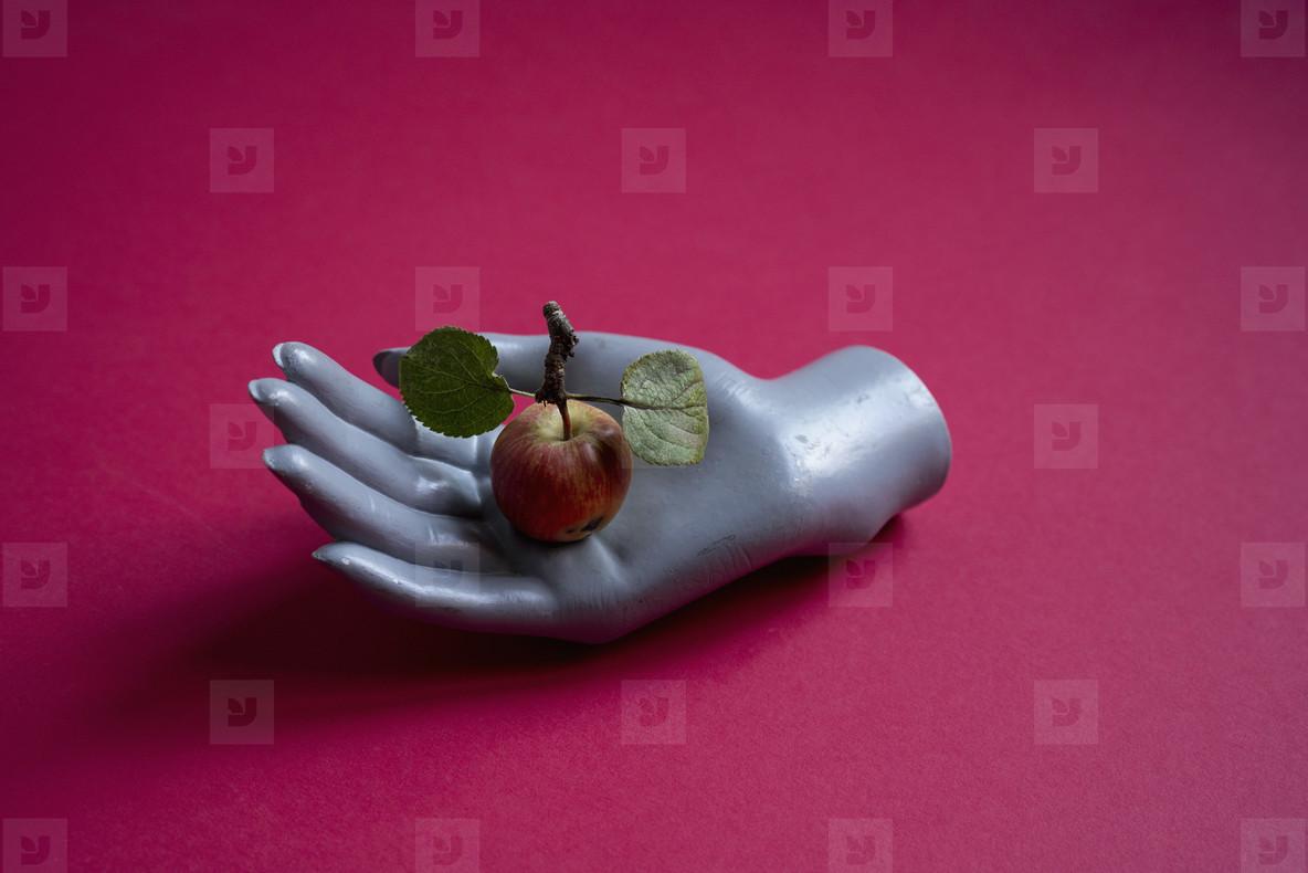Mannequin hand holding fresh red apple