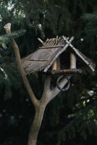 Rustic birdhouse in tree branch