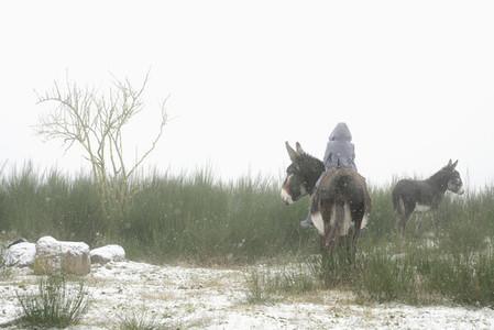 Girl riding donkey in snowy field