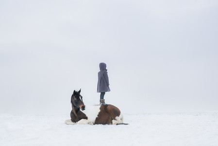 Girl standing on horse laying in snowy field