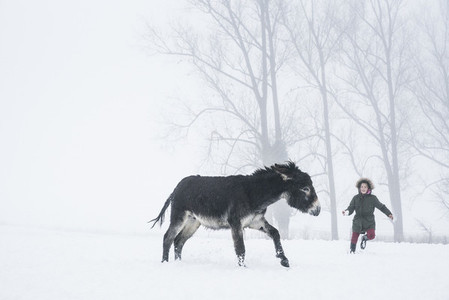 Girl playing with donkey in snowy field