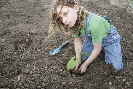 Portrait girl planting seedling in garden dirt