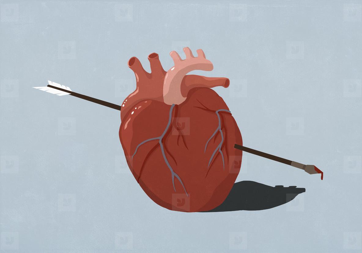 Arrow piercing heart