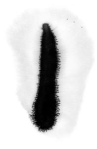 Splotch