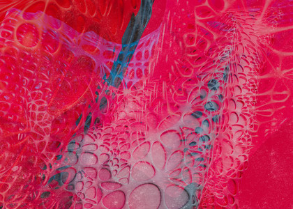 Netted Surfaces 02