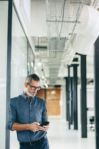 Mature businessman using a mobile phone in an office