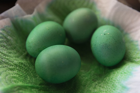 Close up dyed green Easter eggs drying on paper towel