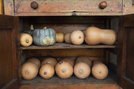 Pumpkins and butternut squash in rustic wooden cupboard