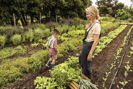 Happy single mother harvesting vegetables with her son