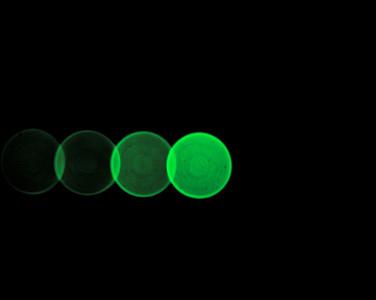 aureole 012