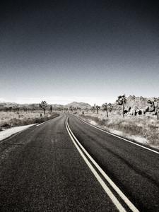 Vintage Road