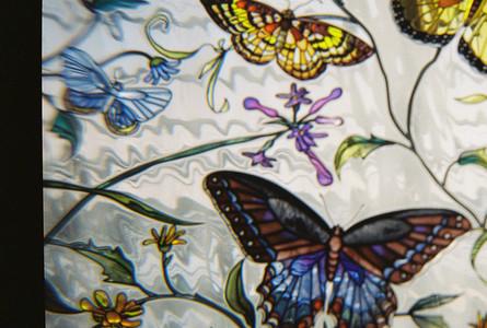 Glass Butterflies