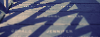 yacht  moon  tiger