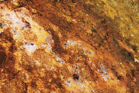 Natural texture 2