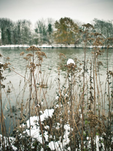 snow on riverbank
