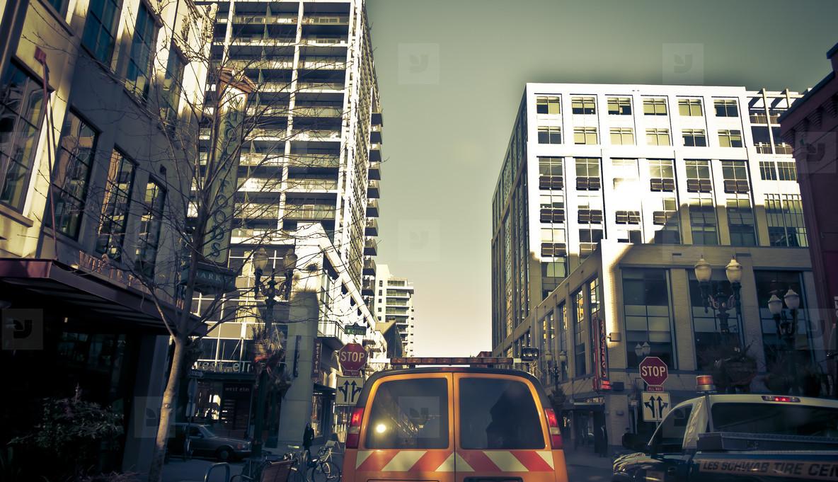 Urban Jungle 014