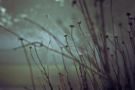 Atmosphere 028