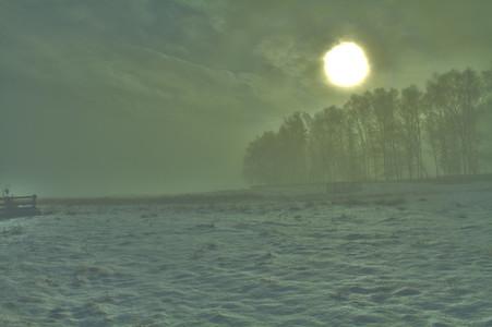 Bradgate Park Mist