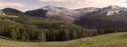 Yellowstone Panoramic