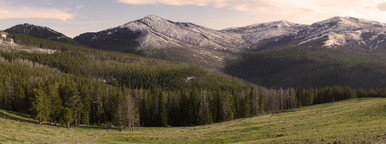 Yellowstone Panoramic