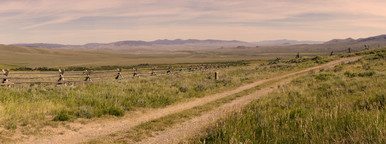 Montana Panoramic
