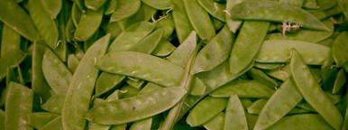 Green snap peas