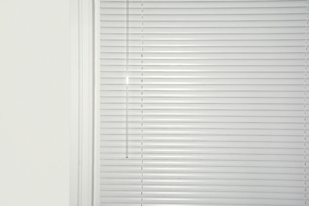 White privacy blinds