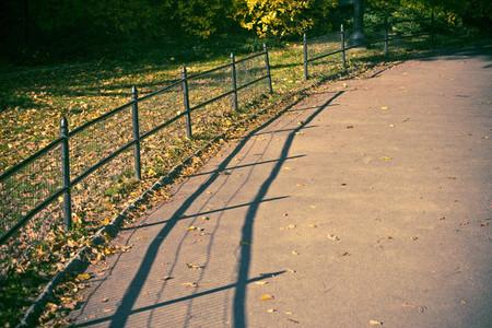 Fence near path