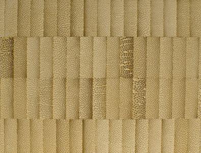bamboo 02