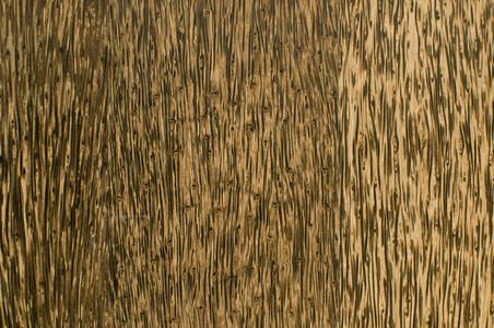 bamboo 03