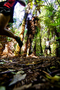 Trail Runners Racing in Forest
