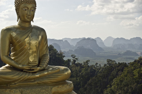 Golden Buddha and Landscape