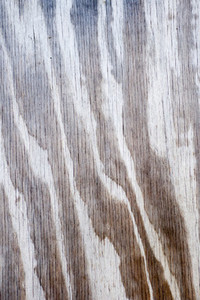 Weathered Wood  2