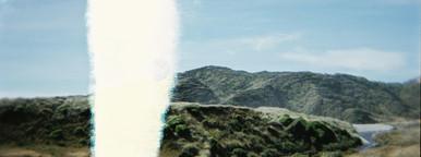 Exposed film  bush scene