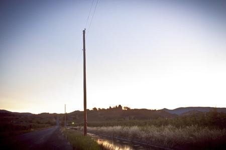 Power Pole II