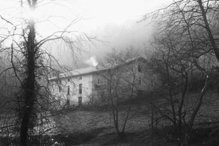 dark homestead