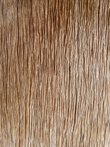 Wood background  Wooden board