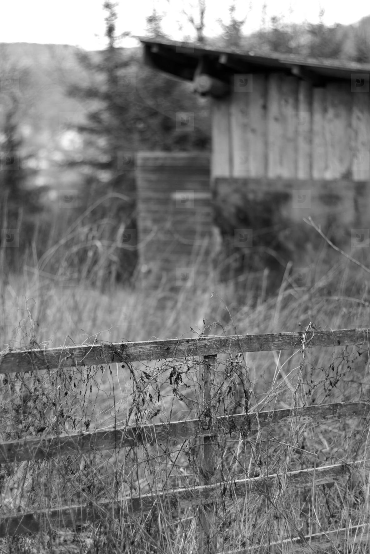 fence II