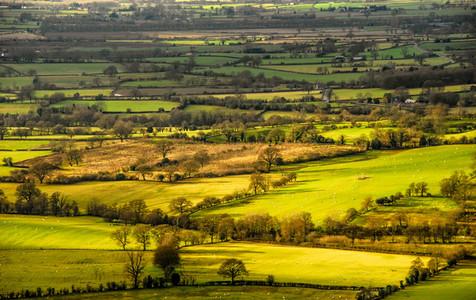 Rural Scenes 3