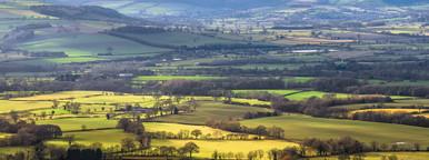 Rural Scenes 4