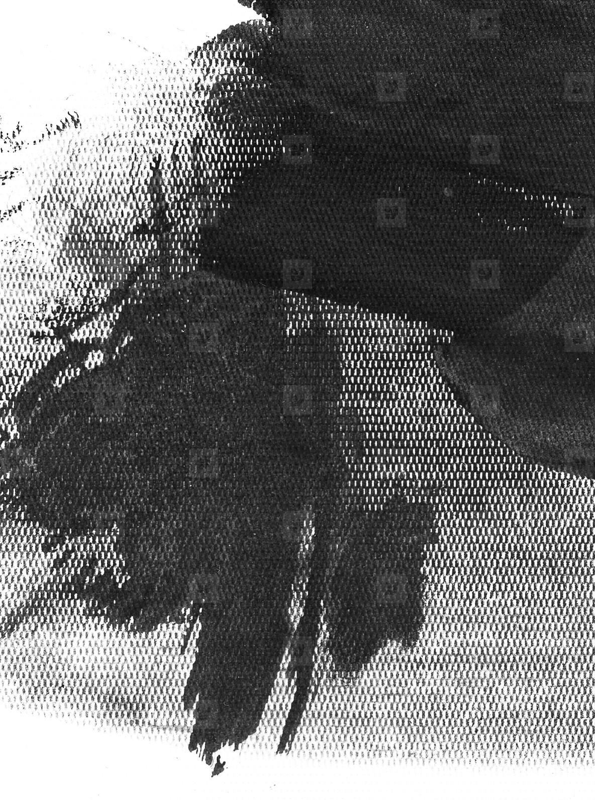 Ink Texture I
