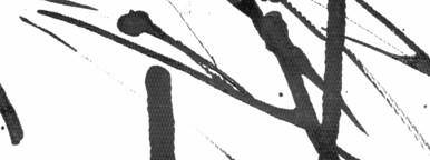 Ink Texture V